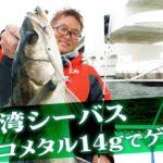 村上晴彦プロが冬の大阪湾をSLJで攻略!!